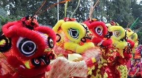 柬埔寨:舞獅舞龍賀新年