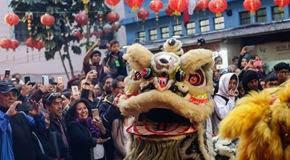 墨西哥:舞獅迎新春