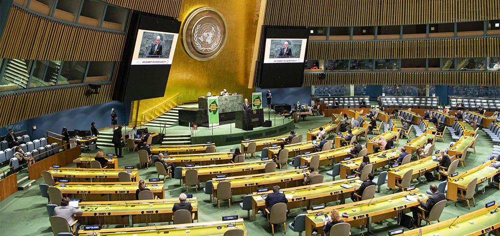 聯合國舉行生物多樣性峰會