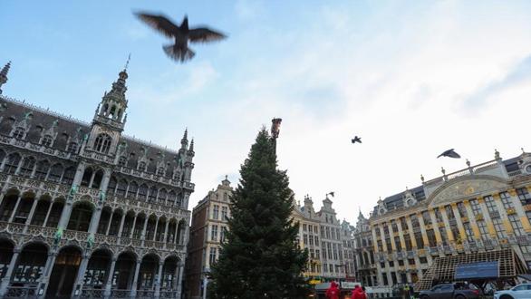 疫情下的聖誕樹