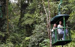 關注環境:哥斯達黎加 綠色國度生態遊(組圖)