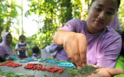 關注環境:馬來西亞慶祝世界環境日(組圖)