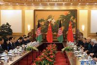 胡錦濤同阿富汗總統舉行會談