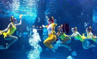 山東一海洋極地世界演員水下送新春祝福