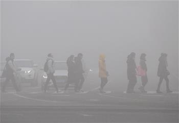 中央氣象臺發布大霧黃色預警