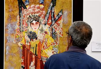 中國瓷藝術展在突尼斯舉行