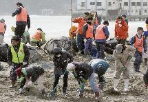 海嘯四周年:日本志願者仍在尋找遇難者遺體(組圖)